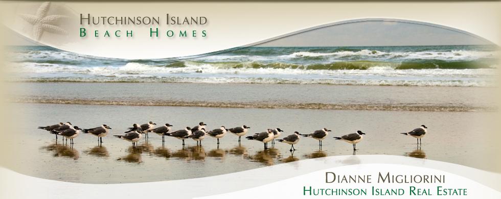 Contact | HutchinsonIsland Beach homes