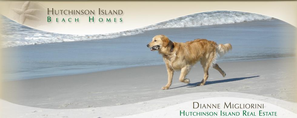 Dianne Migliorini, Pet Friendly | Hutchinson Island Beach homes
